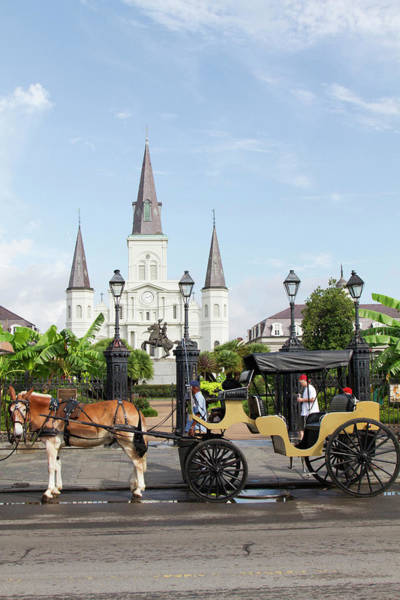 Louisiana Photograph - Horse And Carriage With St Louis by Danita Delimont