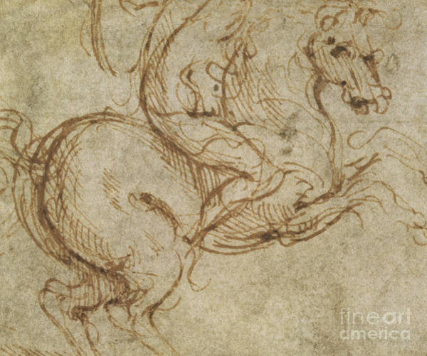 Equestrian Drawing - Horse And Cavalier by Leonardo da Vinci