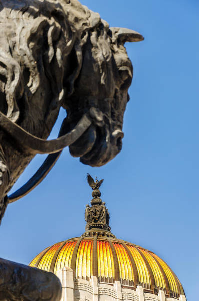 Arte Photograph - Horse And Dome by Jess Kraft