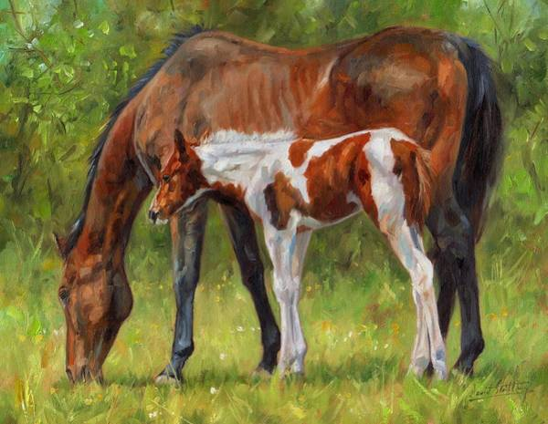 Foal Wall Art - Painting - Horse And Foal by David Stribbling