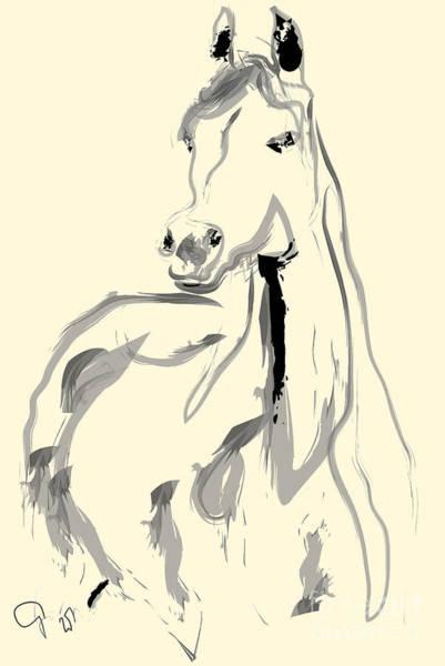 Painting - Horse - Arab by Go Van Kampen