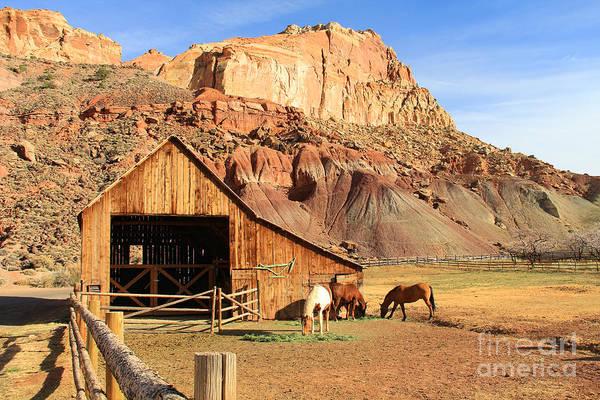 Fruita Photograph - Horse Barn In Fruits Utah 2705 by Jack Schultz