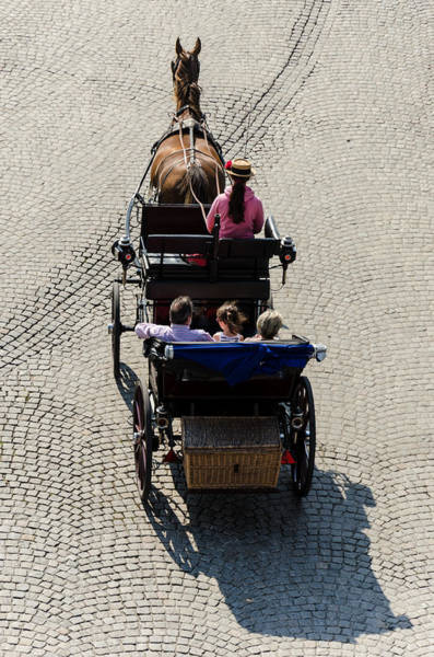 Photograph - Horse Drawn Carriage by Paul Indigo