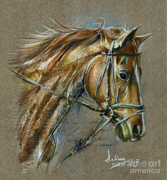 My Horse Face Drawing Art Print