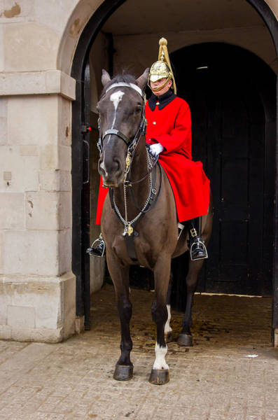 Honor Guard Photograph - Horse Guard by Pati Photography