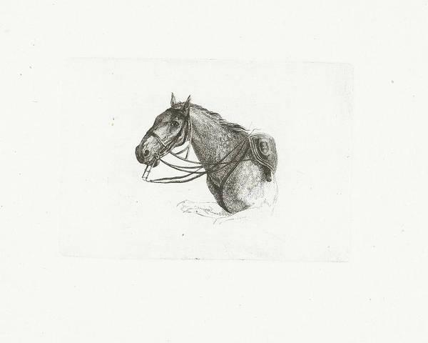 Wall Art - Drawing - Horse Head, Left, Joannes Bemme by Joannes Bemme And Dirk Langendijk