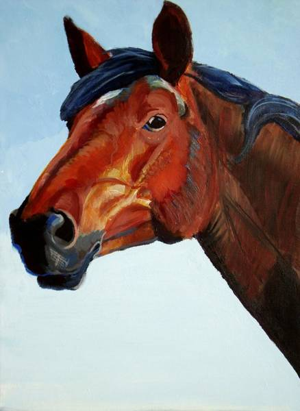 Painting - Horse Head by Mike Jory