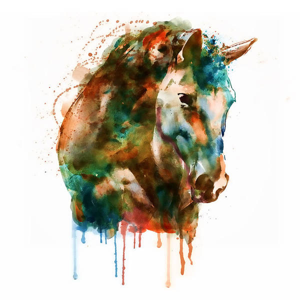 White Horse Wall Art - Painting - Horse Head Watercolor by Marian Voicu