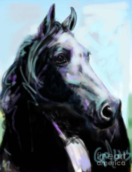 Painting - Horse Painted Black by Go Van Kampen