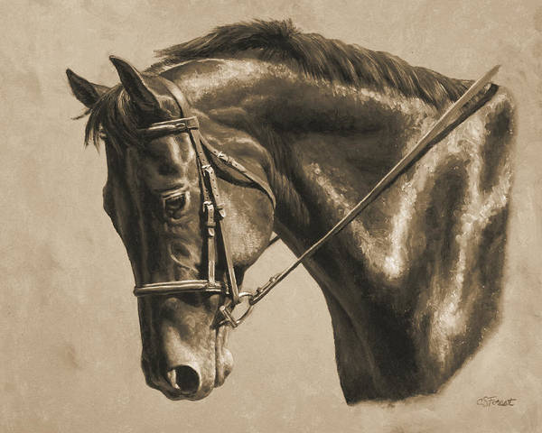 Dressage Wall Art - Painting - Horse Painting - Focus In Sepia by Crista Forest