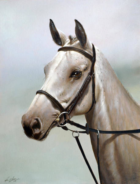 Wall Art - Painting - Horse Portrait I by John Silver