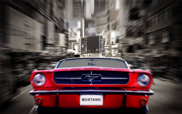 Ford Mustang Photograph - Horse Power by Mark Rogan