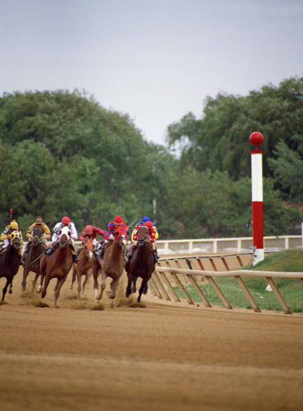 Arlington County Photograph - Horse Race, Arlington Park, Chicago by Animal Images