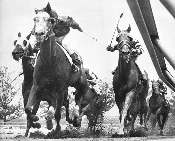 Racetrack Photograph - Horse Racing At Aqueduct Track by Underwood Archives