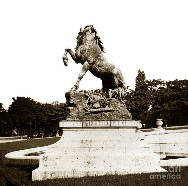 Photograph - Horse Sculpture Trocadero  Paris France 1900 Historical Photos by California Views Archives Mr Pat Hathaway Archives