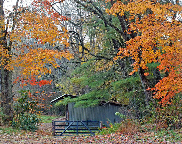 Photograph - Horse Shed In The Fall by Duane McCullough