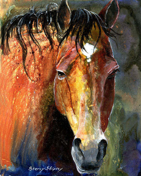 Painting - Horse by Sherry Shipley