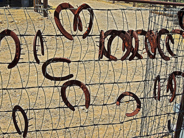 Horse Shoe Digital Art - Horse Shoe Fence by Donna Lee Young