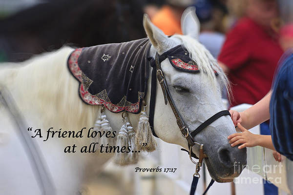 Photograph - Horse With Scripture Verse by Jill Lang
