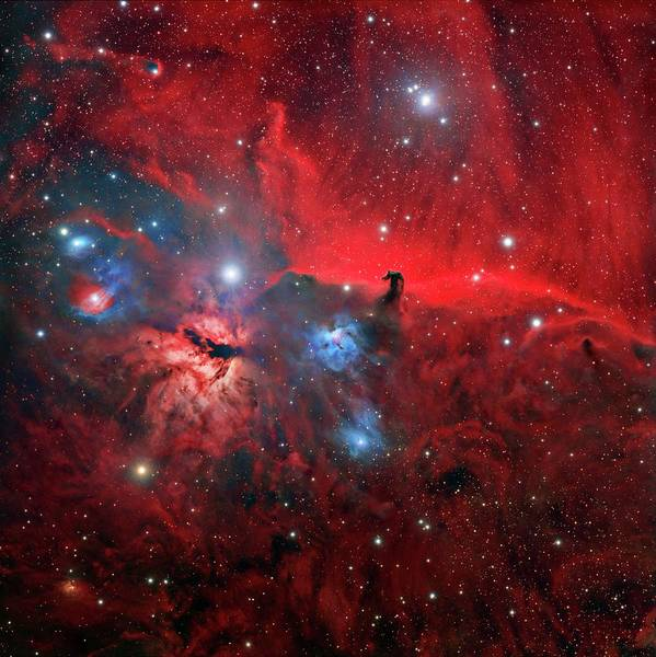 Astronomical Wall Art - Photograph - Horsehead And Flame Nebulae by Tony & Daphne Hallas