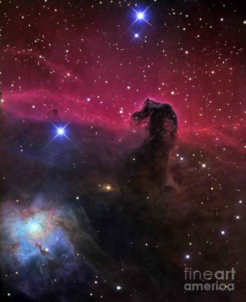 Photograph - Horsehead Nebula by R Jay GaBany