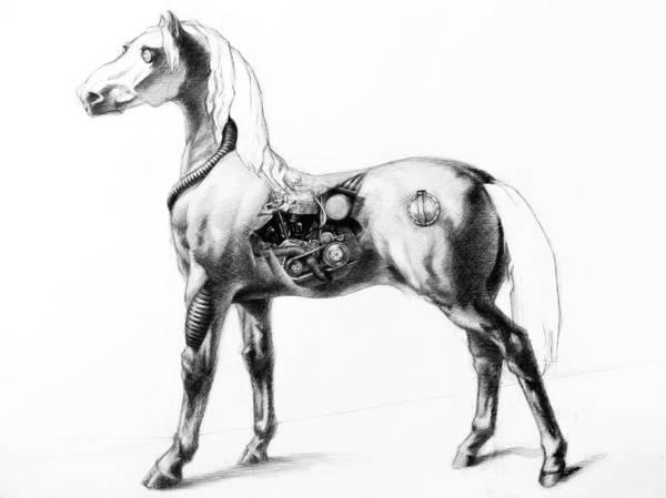 Friesian Drawing - Horsepower by L Fox