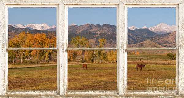 Photograph - Horses And Autumn Colorado Front Range Picture Window View by James BO Insogna