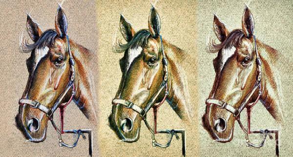 Drawing - Horses Hand Drawing by Daliana Pacuraru