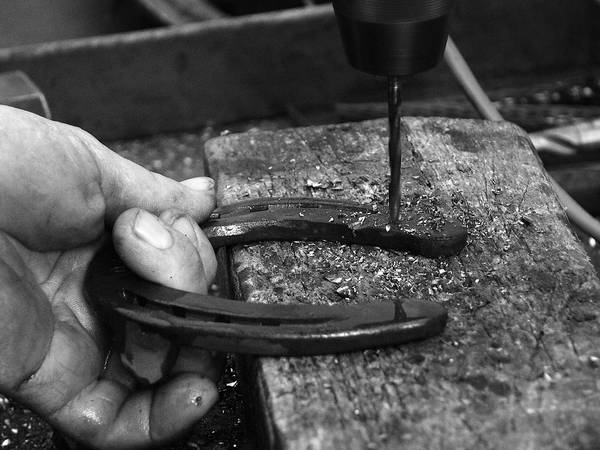 Farrier Photograph - Horseshoe And Hand Of A Blacksmith by Matthias Hauser