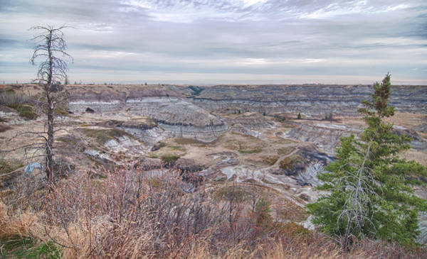 Photograph - Horseshoe Canyon 13276 by Guy Whiteley
