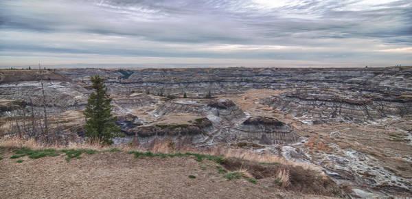 Photograph - Horseshoe Canyon 13294 by Guy Whiteley