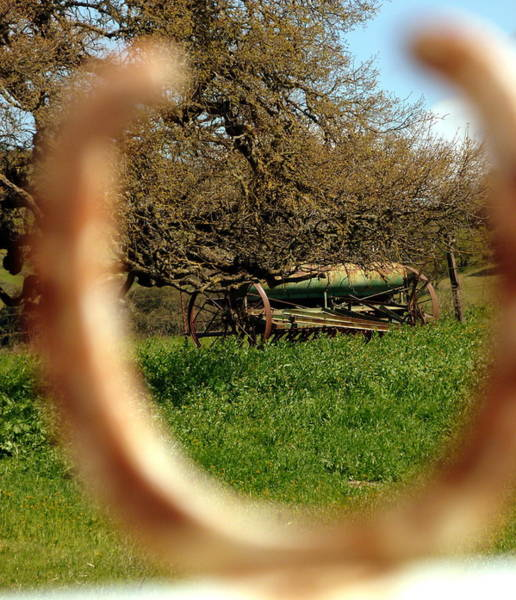Photograph - Horseshoe Wagon by Jeff Lowe