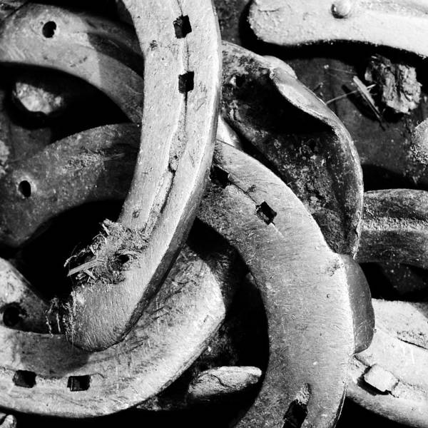 Detail Photograph - Horseshoes Black And White by Matthias Hauser