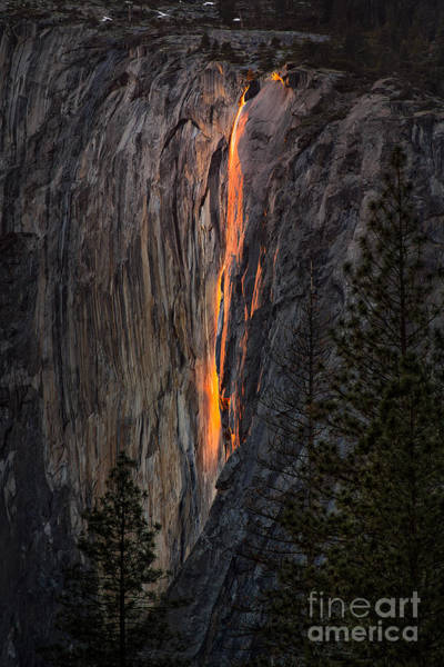 Photograph - Horsetail Falls by Vincent Bonafede