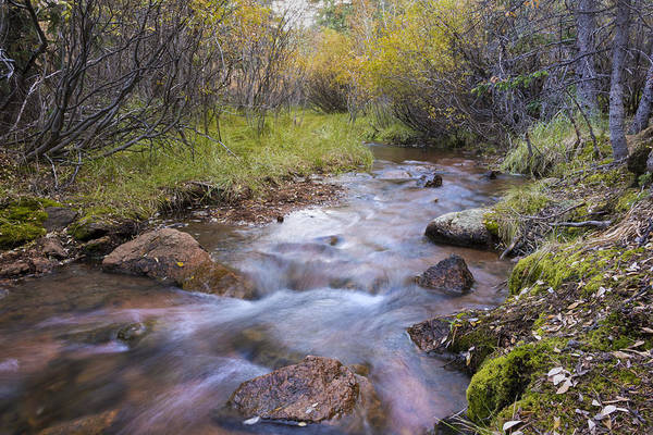 Wall Art - Photograph - Horsethief Creek - Cripple Creek Colorado by Brian Harig