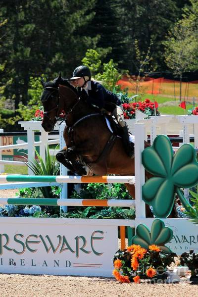 Photograph - Horseware Jump by Janice Byer