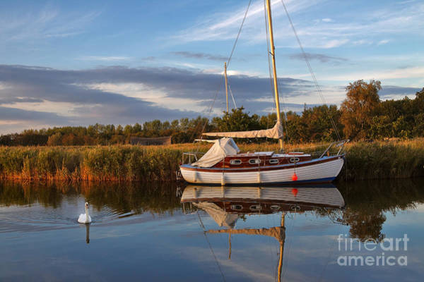 Swan Boats Photograph - Horsey Mere In Evening Light by Louise Heusinkveld