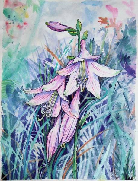 Painting - Hosta's In Bloom by Nicole Angell