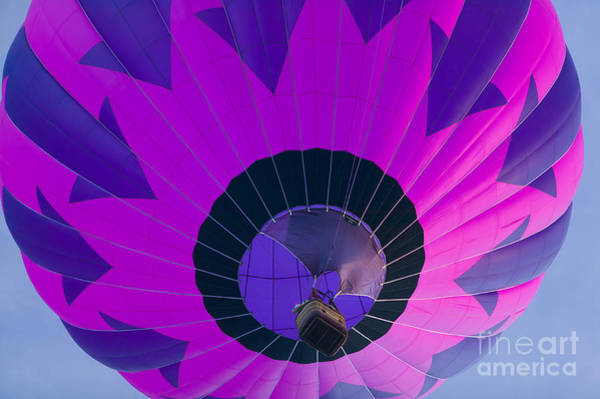Photograph - Hot Air Balloon Ascent I by Clarence Holmes