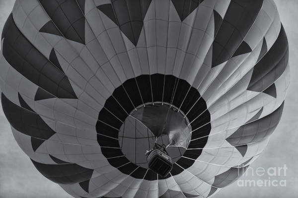 Photograph - Hot Air Balloon Ascent II by Clarence Holmes