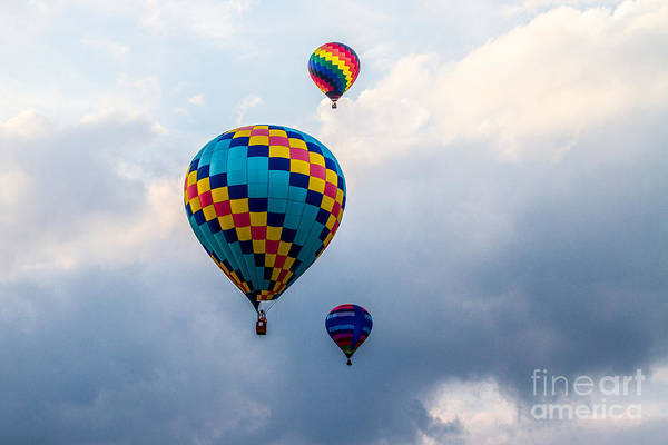 Photograph - Hot Air Balloon Trio by Eleanor Abramson