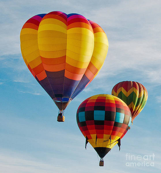 Photograph - Hot-air Balloons by Mae Wertz