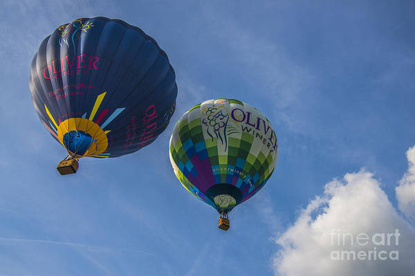 Photograph - Hot Air Balloons Ow 7 by David Haskett II