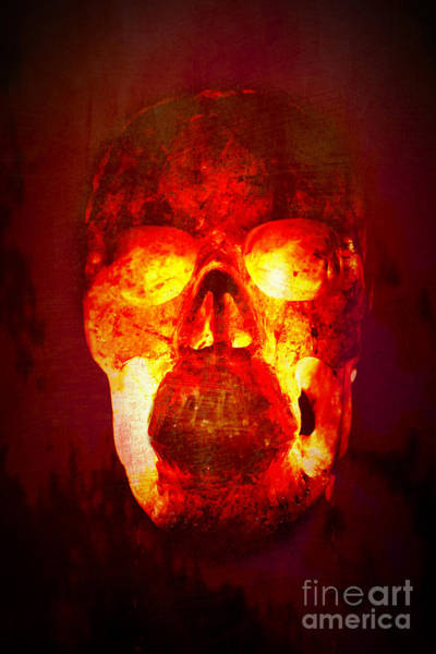 Wall Art - Photograph - Hot Headed Skull by Terri Waters