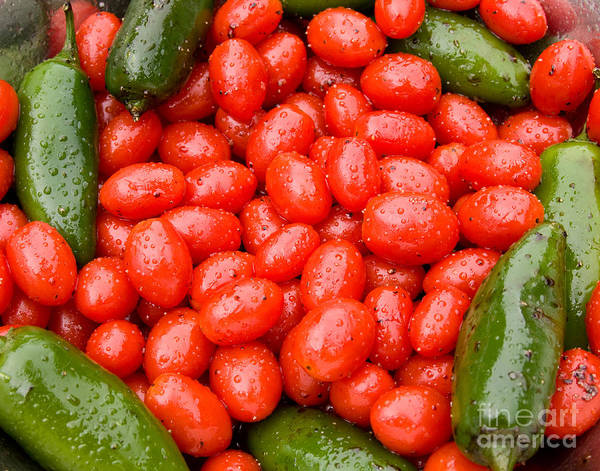 Photograph - Hot Peppers And Cherry Tomatoes by James BO Insogna