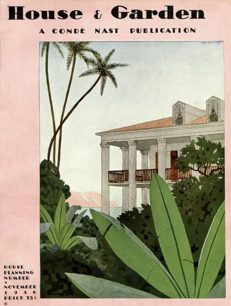 Tropical Plant Photograph - House & Garden Cover Illustration by Andre E.  Marty