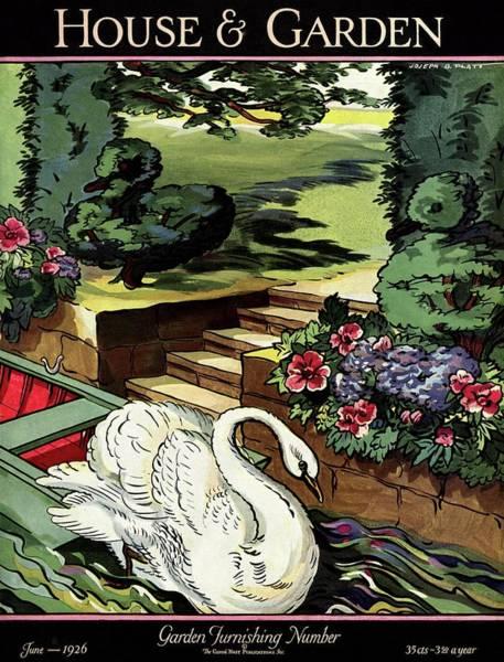 Wildlife Photograph - House & Garden Cover Illustration Of A Swan by Joseph B. Platt