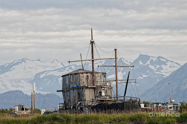 Photograph - House Boat On Spit In Homer by Dan Friend