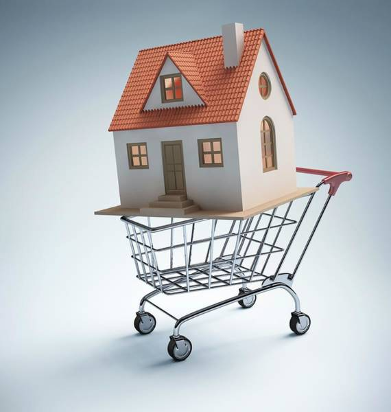 Commercialism Photograph - House In Shopping Trolley by Ktsdesign