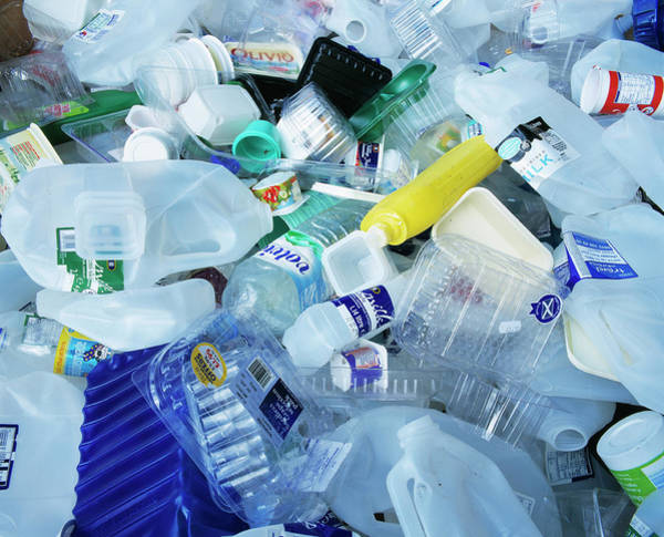 Bottle Green Photograph - Household Waste by Simon Fraser/science Photo Library